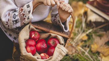 Jablká dokážu prežiť aj 3. svetovú. Ako?