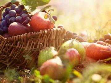 Jablká nie sú obyčajné, sú vzácne