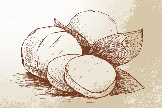 Tradičnými výrobkami boli ovčie syry, bryndza, oštiepok, parenica a žinčica.